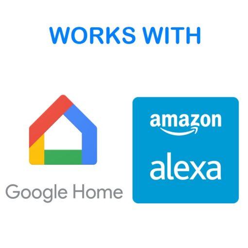 Alexa - Google Home